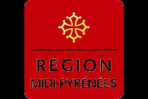 region_mipy_agile_it